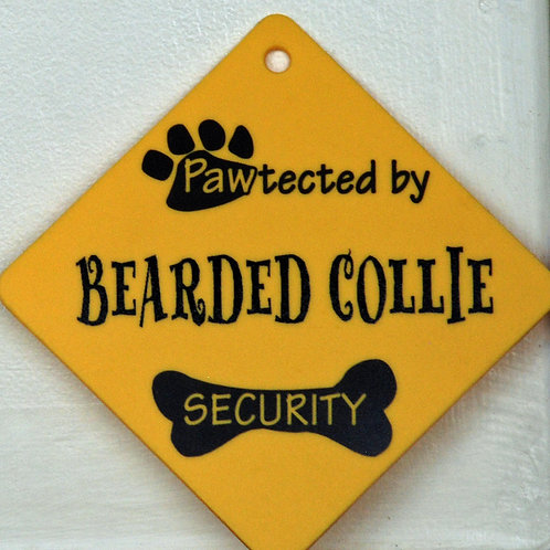 Bearded Collie, Pawtected by