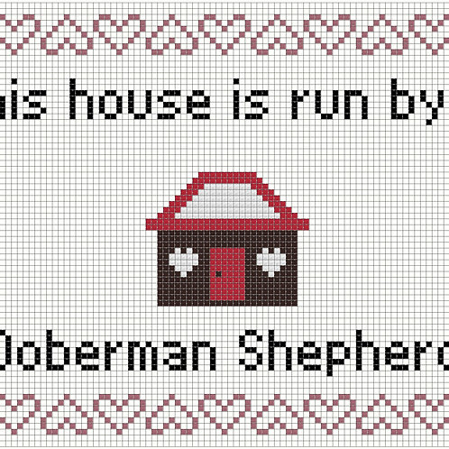Doberman Shepherd, This house is run by