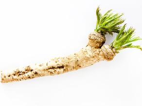 Horseradish and Potatoes
