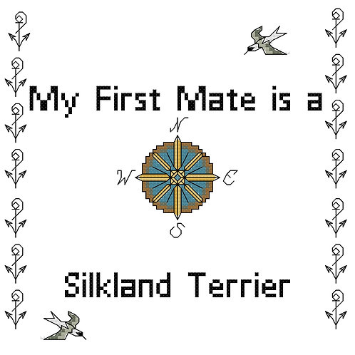 Silkland Terrier, My First Mate is a