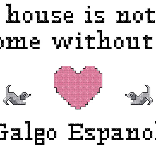 Galgo Espanol, A House is Not a Home Without