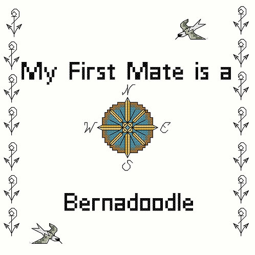 Bernadoodle, My First Mate is a