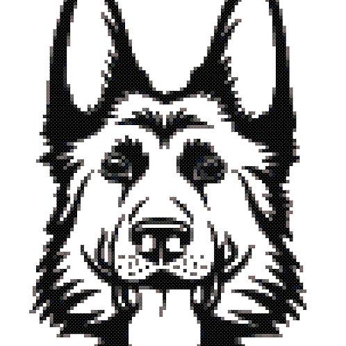 Monochromatic German Shepherd Portrait