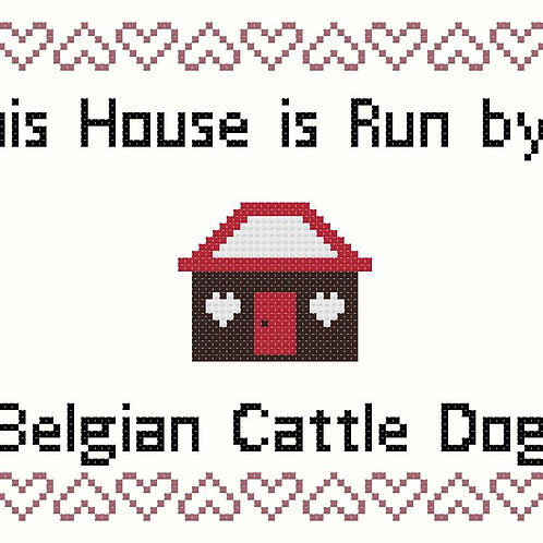 Belgian Cattle Dog, This house is run by