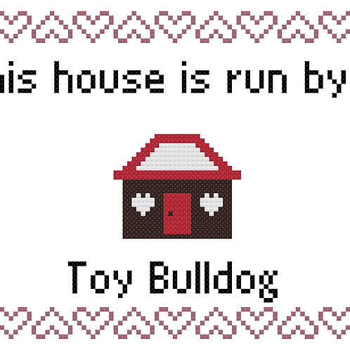 Toy Bulldog, This house is run by