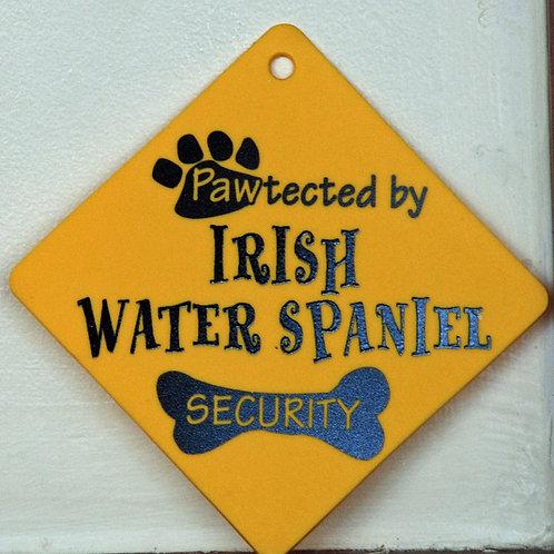 Irish Water Spaniel, Pawtected by