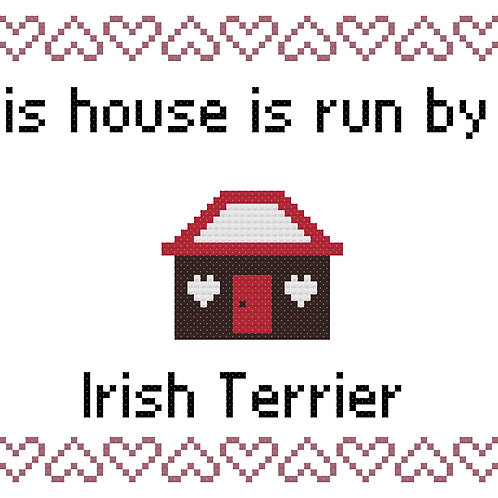 Irish Terrier, This house is run by