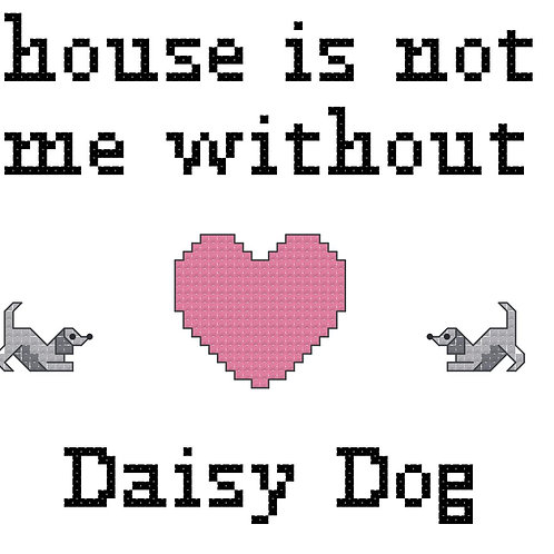 Daisy Dog, A House is Not a Home Without