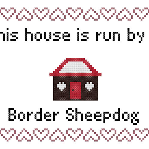 Border Sheepdog, This house is run by