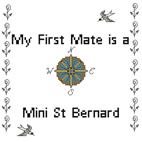 Mini St Bernard, My First Mate is a
