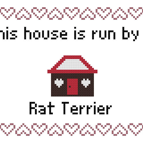 Rat Terrier, This house is run by