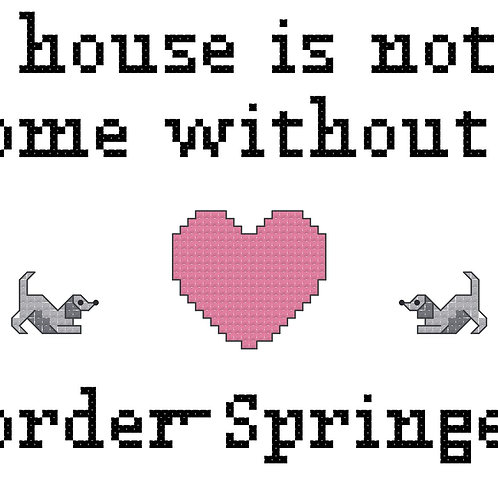 Border Springer, A House is Not a Home Without