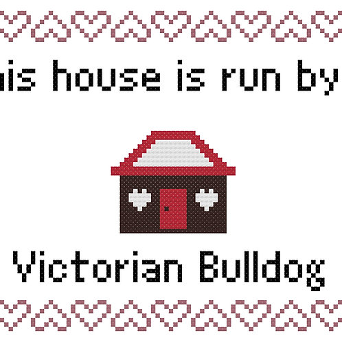 Victorian Bull Dog, This house is run by