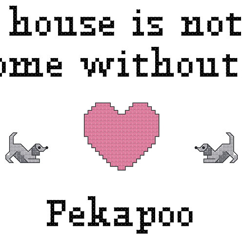 Pekapoo, A House is Not a Home Without