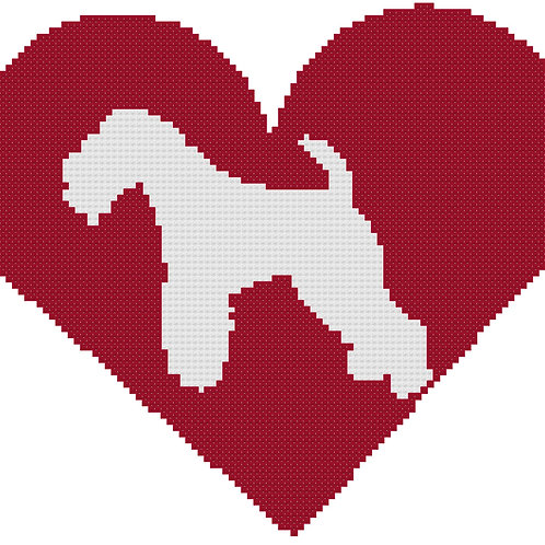 Lakeland Terrier in Heart
