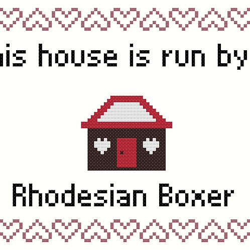 Rhodesian Boxer, This house is run by
