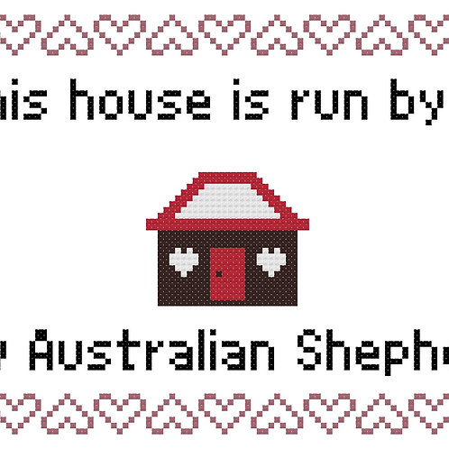 Toy Australian Shepherd, This house is run by