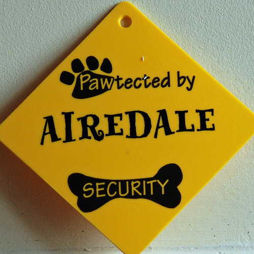 Airedale, Pawtected by