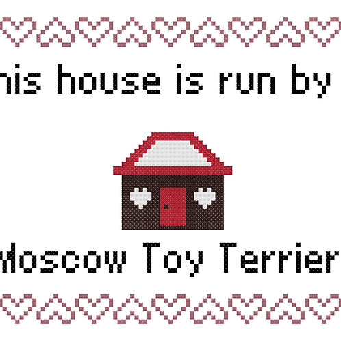 Moscow Toy Terrier, This house is run by