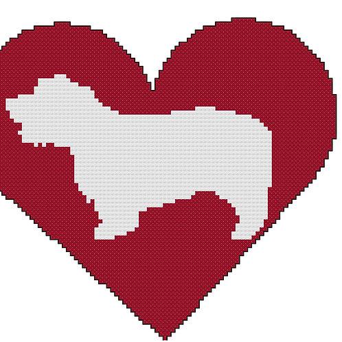 Glen of Imaal Terrier in Heart