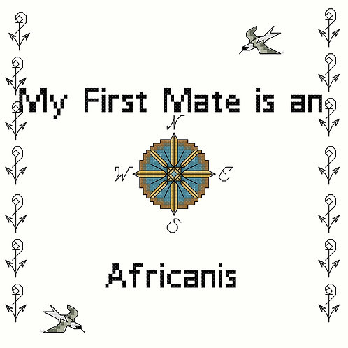 Africanis, My First Mate is a