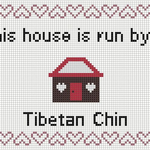 Tibetan Chin, This house is run by