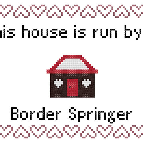 Border Springer, This house is run by