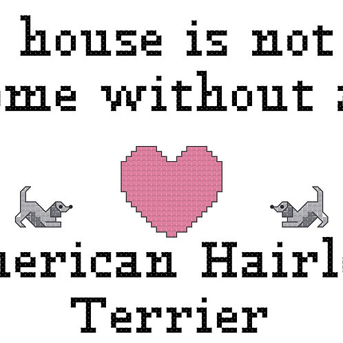 American Hairless Terrier, A House is Not a Home Without