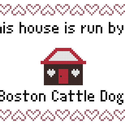Boston Cattle Dog, This house is run by