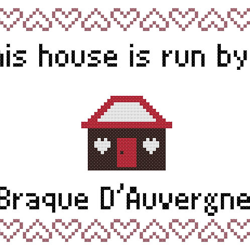 Braque D'Auvergne, This house is run by