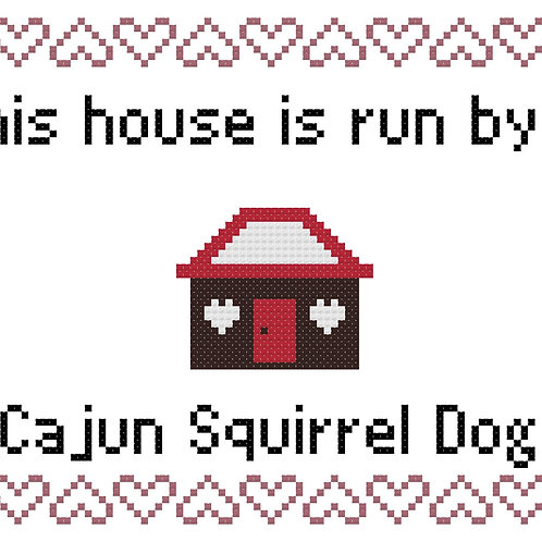 Cajun Squirrel Dog, This house is run by