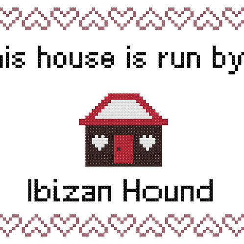 Ibizan Hound, This house is run by