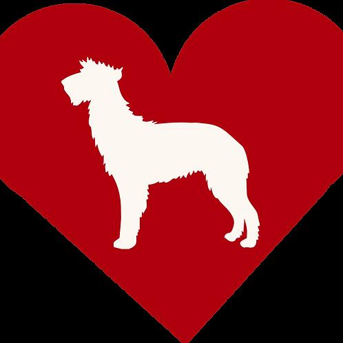 Scottish Deerhound Dog in Heart