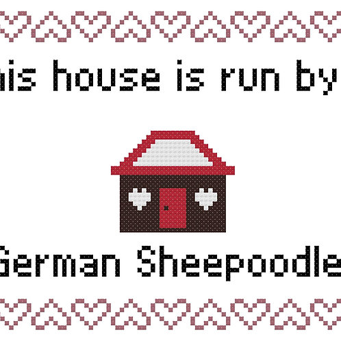 German Sheepoodle, This house is run by