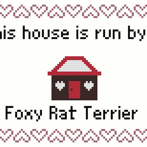 Foxy Rat Terrier, This house is run by