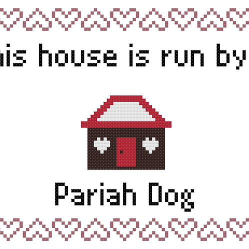 Pariah Dog, This house is run by