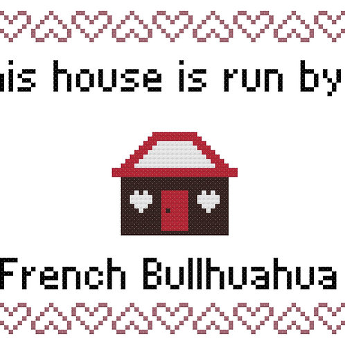 French Bullhuahua, This house is run by