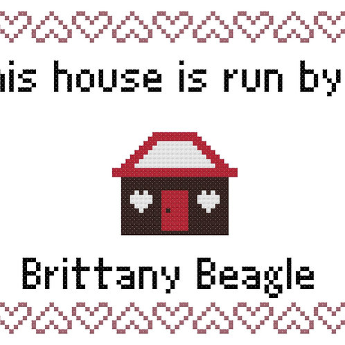 Brittany Beagle, This house is run by