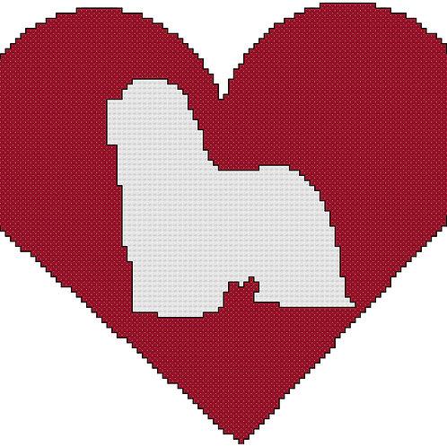 Bearded Collie in Heart