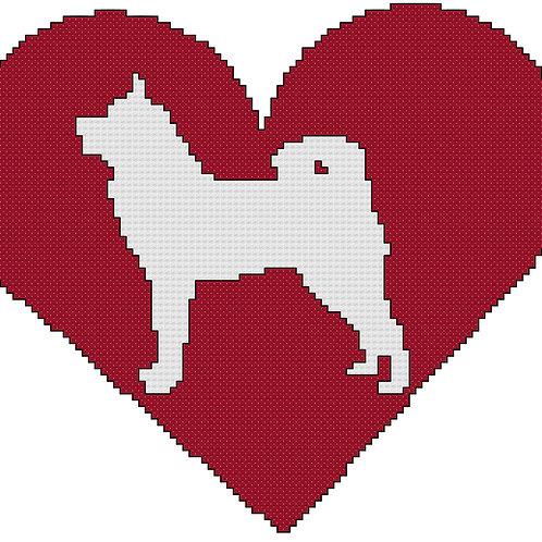 Karelian Bear Dog in Heart