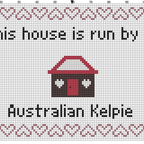 Australian Kelpie, This house is run by