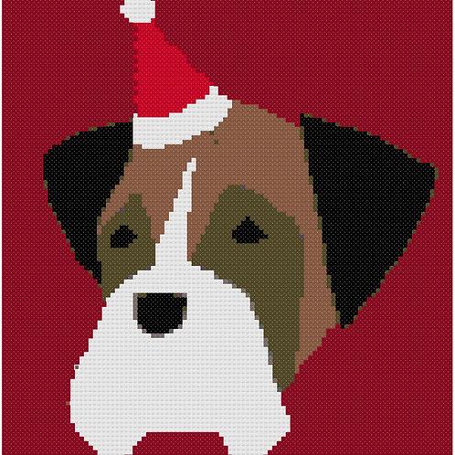 Christmas Boxer