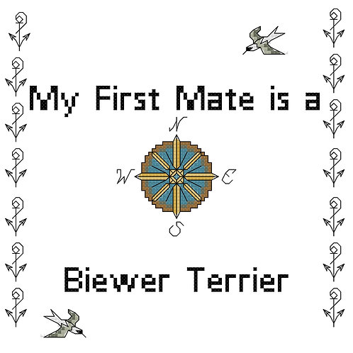 Biewer Terrier, My First Mate is a