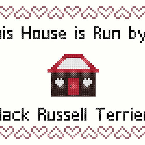 Jack Russell Terrier, This house is run by