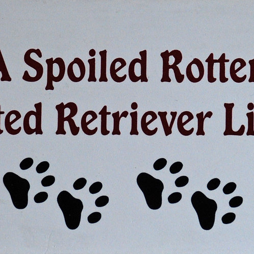 Flat Coated Retriever, A Spoiled Rotten......Lives Here Sign