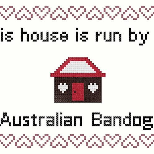 Australian Bandog, This house is run by