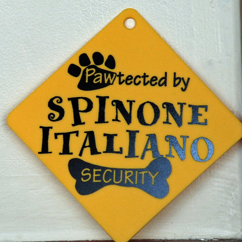 Spinone Italiano, Pawtected by