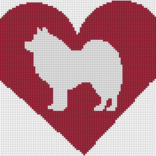 American Eskimo Dog in heart