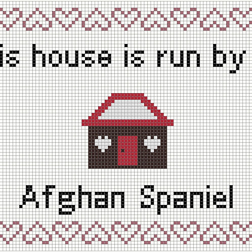 Afghan Spaniel, This house is run by