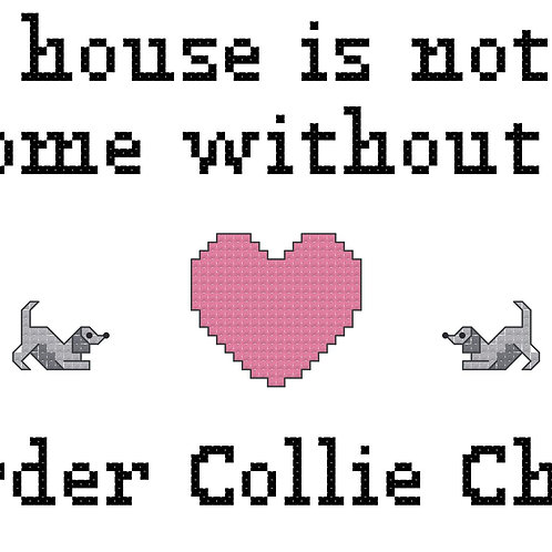 Border Collie Chow, A House is Not a Home Without